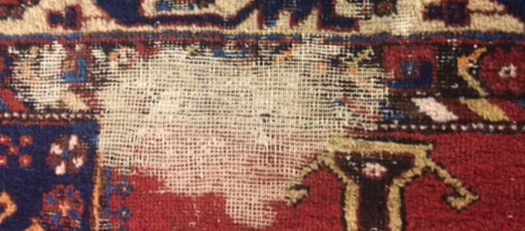 How can I protect my rugs against bugs?