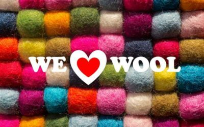 Strength + Sustainability = Why We Heart Wool